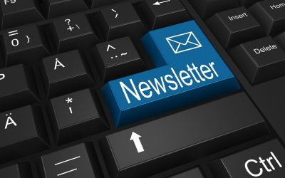 Latest edition of School Council Newsletter available to read now